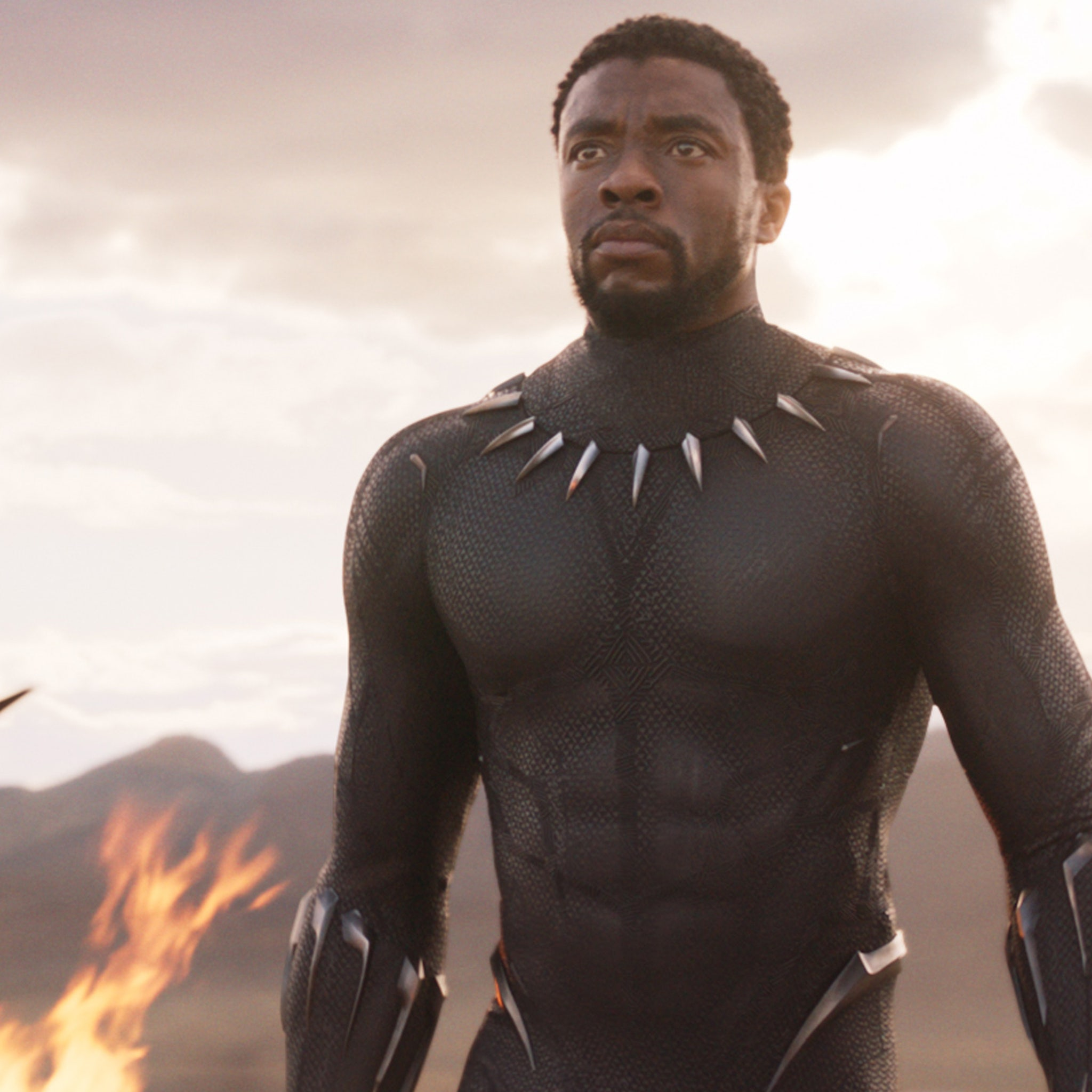 Chadwick Boseman Is The Superhero We Need Right Now In Latest Black Panther Trailer