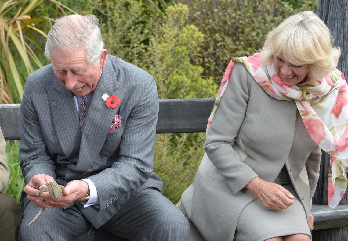 У членов британской королевской семьи тоже есть неудачные фото: весёлая подборка