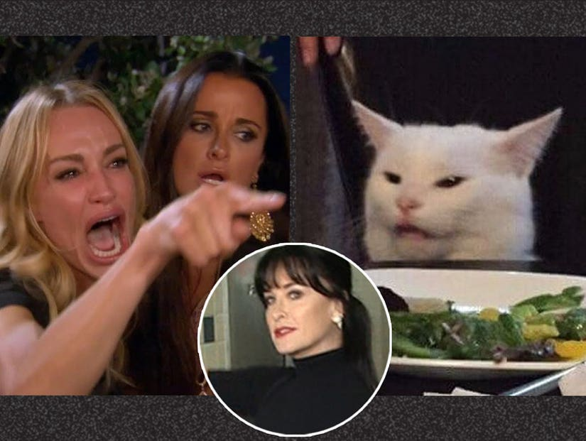 Kyle Richards Has No Clue What Woman Yelling At Cat Meme Is About
